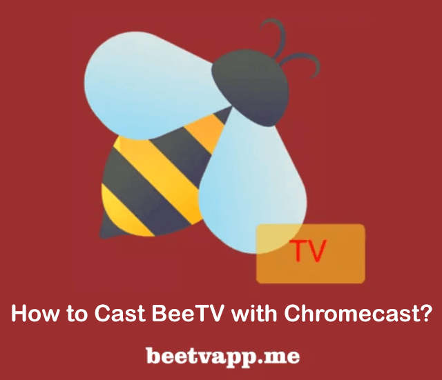 How to Cast BeeTV with Chromecast?